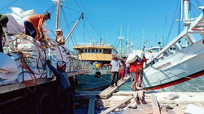 Diduga Tak Ada Money Politik, Ratusan Kuli Panggul Pelabuhan Gresik Golput